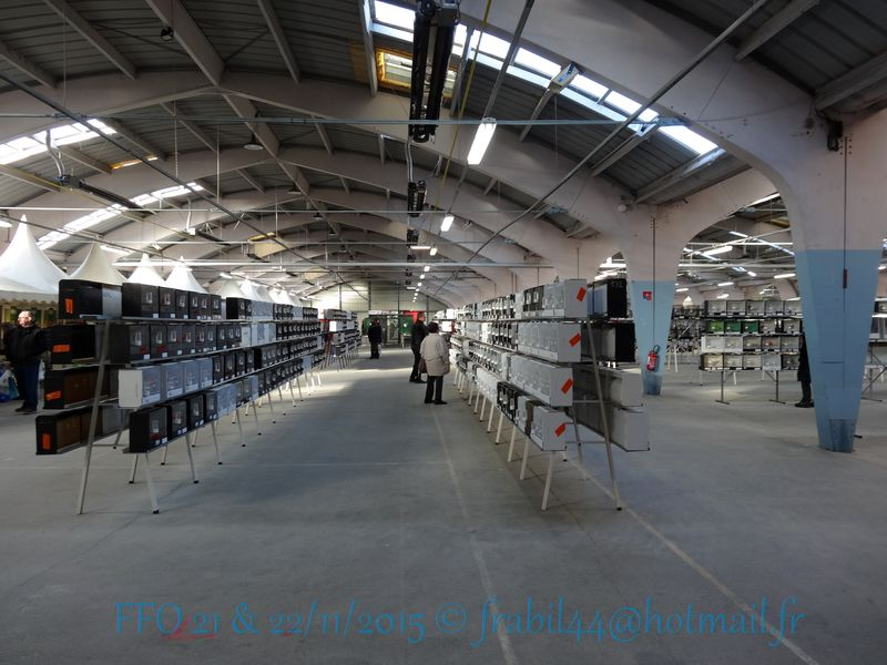 Nationnal FFO 2015 à Niort (79). DSC104246