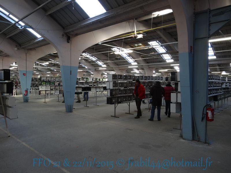 Nationnal FFO 2015 à Niort (79). DSC104247