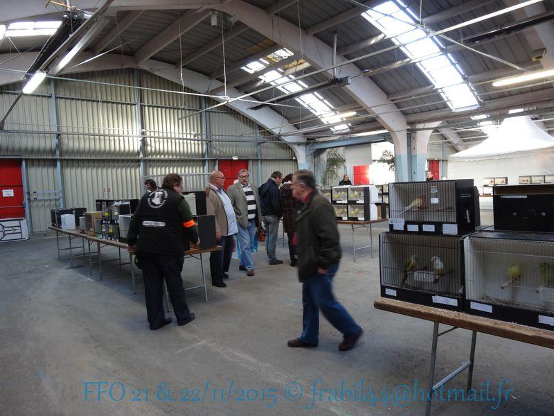 Nationnal FFO 2015 à Niort (79). DSC104257