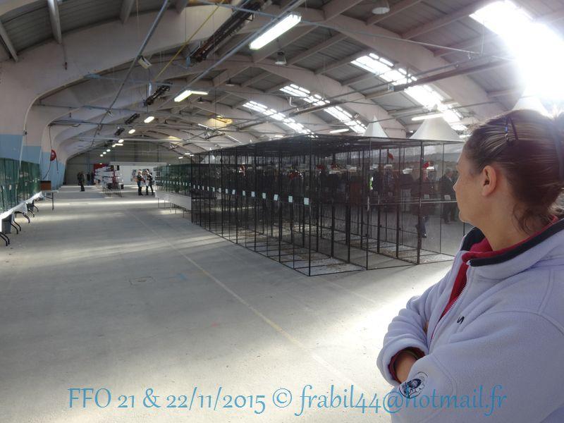Nationnal FFO 2015 à Niort (79). DSC104278